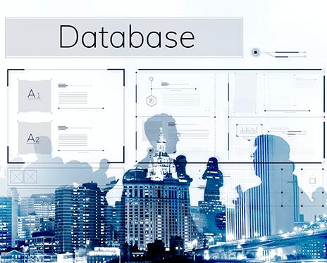 膨大な組織、人材データを蓄積